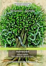 Θρησκευτικά Α΄ Γυμνασίου – βιβλίο μαθητή